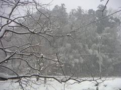 20050101_1.jpg