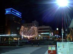 20050105_5.JPG
