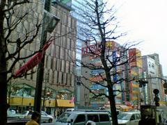 20050323_1.JPG