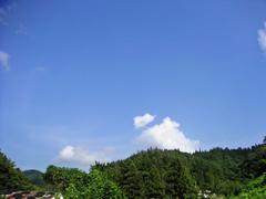 20050818_1.JPG