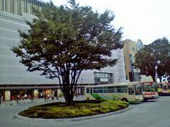 20050819_1.JPG